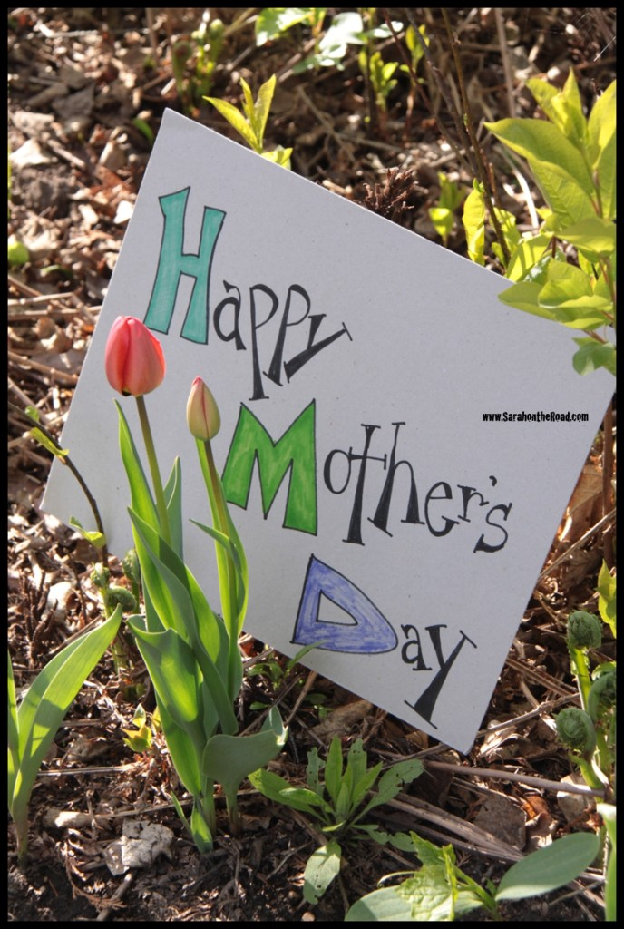 Tulips with Mother's Day sign
