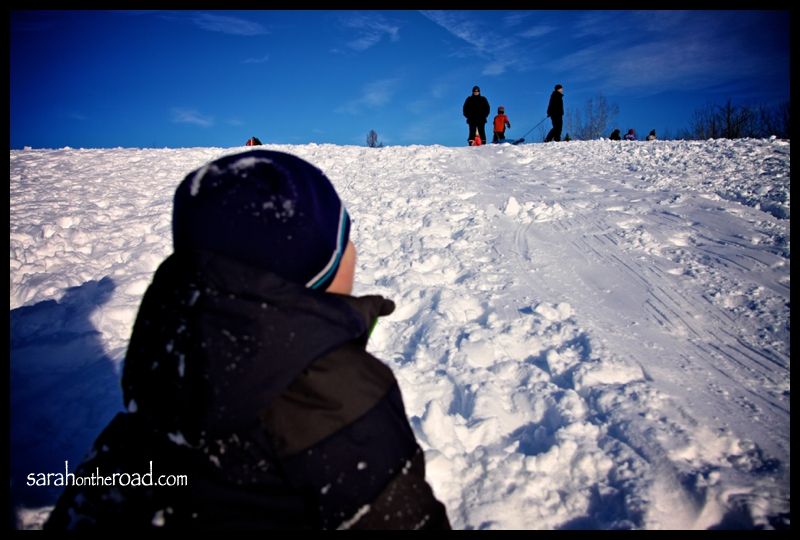 Sledding Photos (Dec 29) 25
