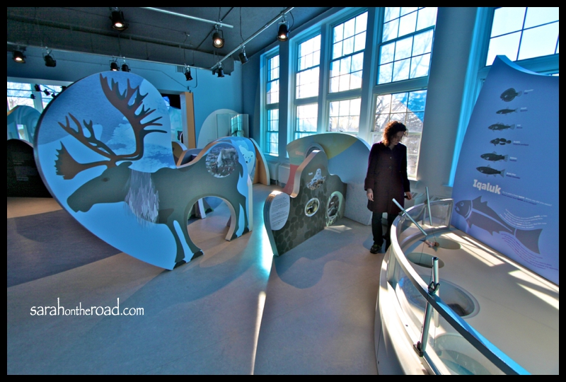 Arctic Room at London's Children Museum