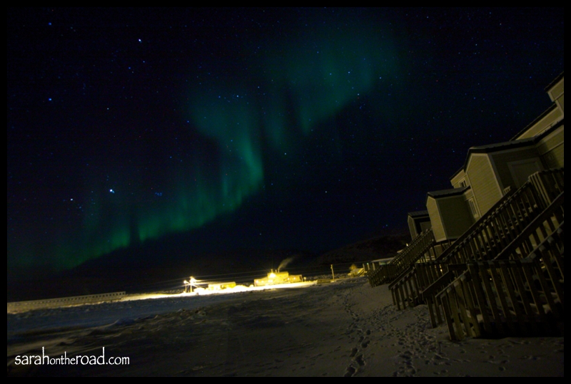 Northern Lights in my Backyard...