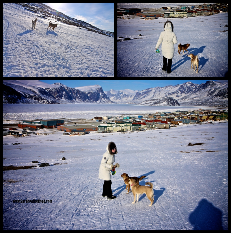 Pangnirtung, walking in the hills above town.