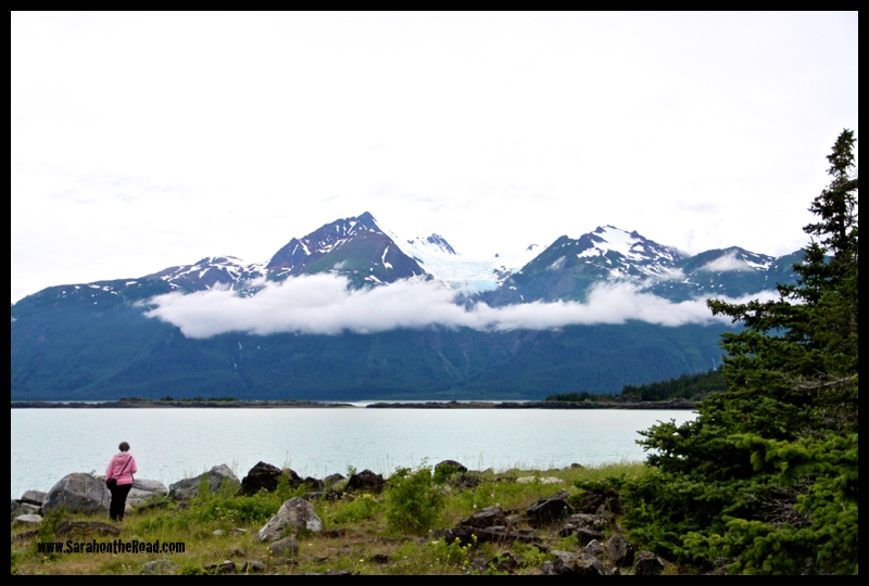 Haines to Haines Junction 8