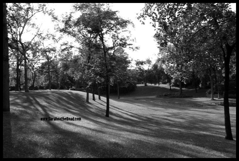B&W of park