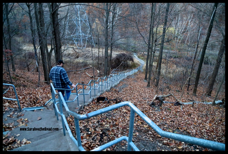The stairs down to the ravine