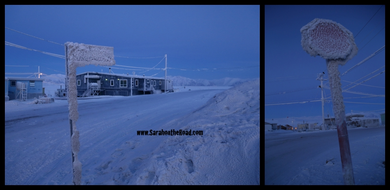 Pond Inlet-2014009