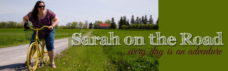 Sarah on the Road